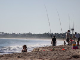 cove-surf fishing-vb-sm
